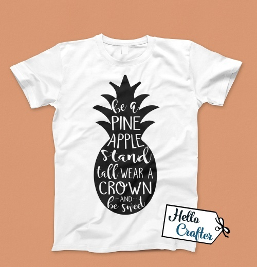 Be a Pineapple Commercial License