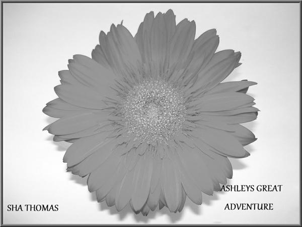 ASHLEY'S GREAT ADVENTURE