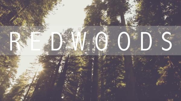 """Redwoods"" Lyric Video"