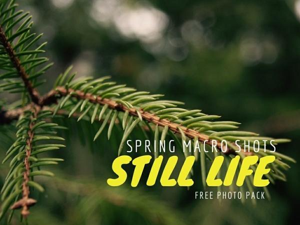 Spring macro shots Photo Pack
