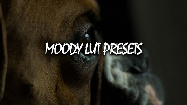 Moody Lut Presets (Lightroom)