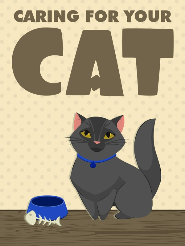 Caring for your Cat (ebook)