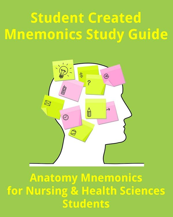 Anatomy Mnemonics for Nursing and Health Sciences Students (89 Pages)