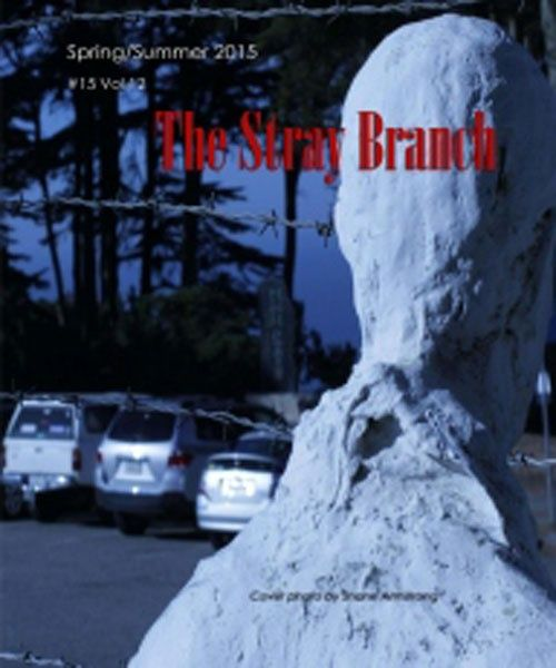 The Stray Branch #15 Vol 12 Spring/Summer 2015