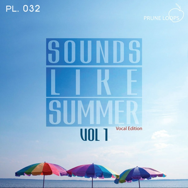 Sounds Like Summer Vol 1