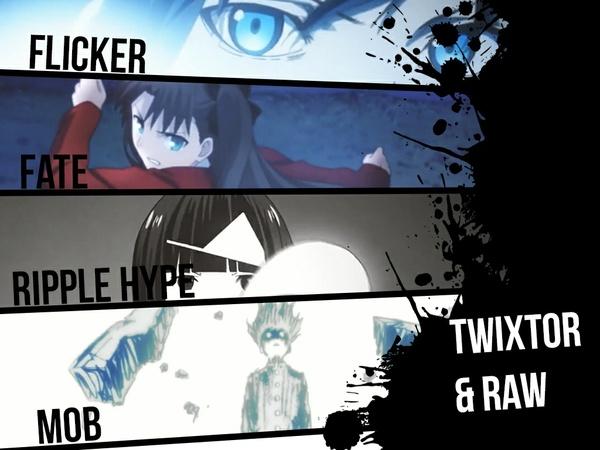 TWIXTOR & RAW bundle