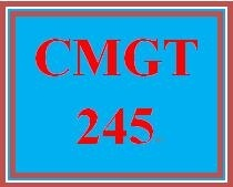 CMGT 245 Week 1 Individual Assessing Risk