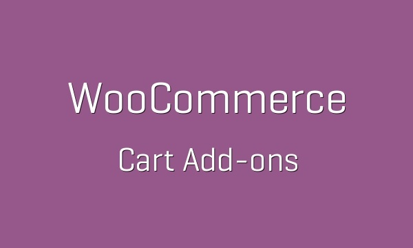 WooCommerce Cart Add-Ons 1.5.17 Extension