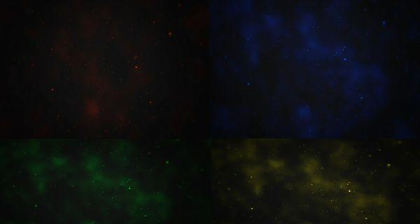 MayzFX Particle + CC's