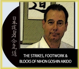 The Strikes, Footwork and Blocks of Nihon Goshin Aikido - Shihan Steven Weber