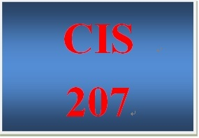 CIS 207 Week 4 Individual System Evaluation Paper