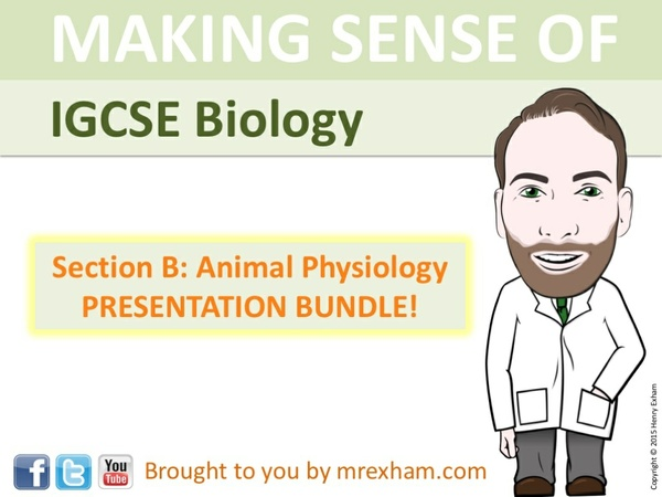 IGCSE Biology - Animal Physiology Presentation Bundle