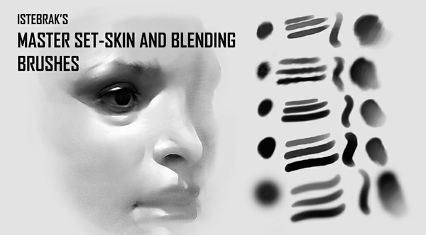Master Set-Skin and Blending Brushes by Istebrak