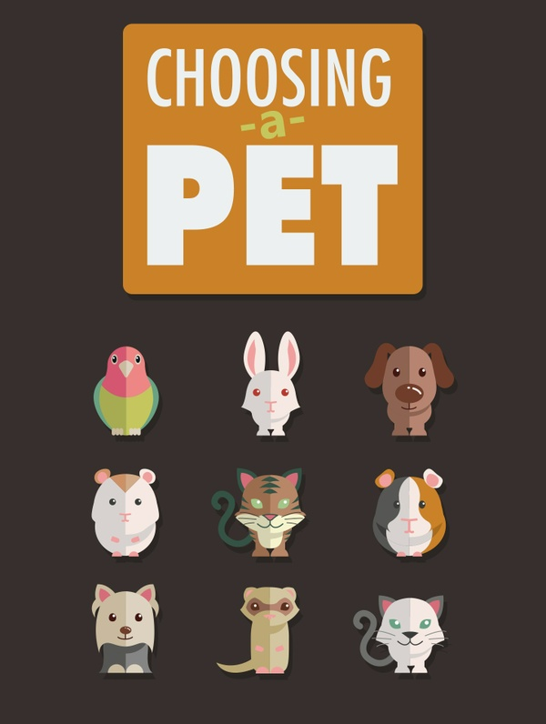 Choosing a Pet (Including MRR)
