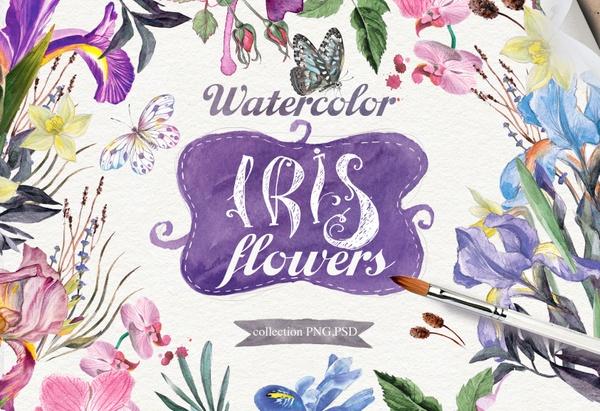 Watercolor collection of IRIS Flowers  /fleur-de-lis/