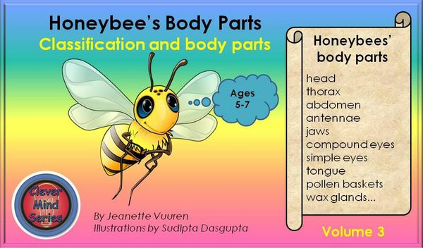 HONEYBEE FACTS: HONEYBEE'S BODY PARTS VOLUME 3 JEANETTE VUUREN
