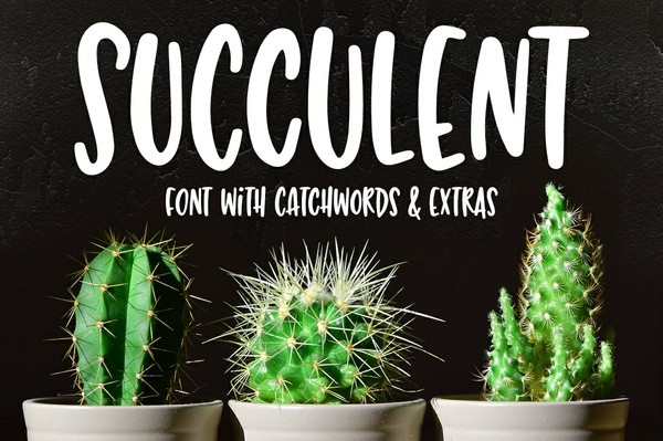 Succulent: a hand-lettered font!