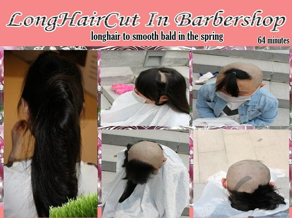 longhair to smooth bald in the spring
