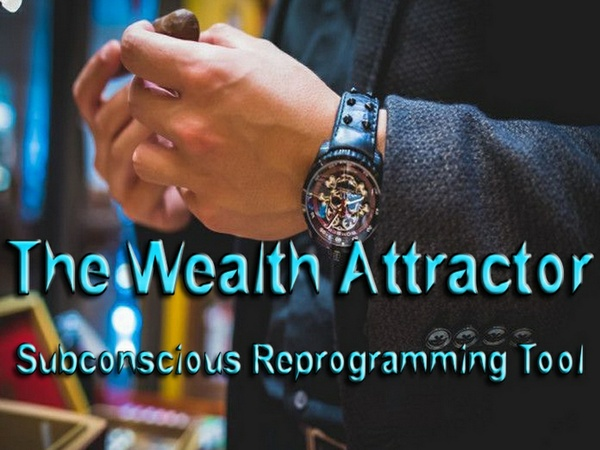 The Wealth Attractor Mind Movie