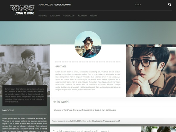 WordPress & Coppermine / Premium Theme #01