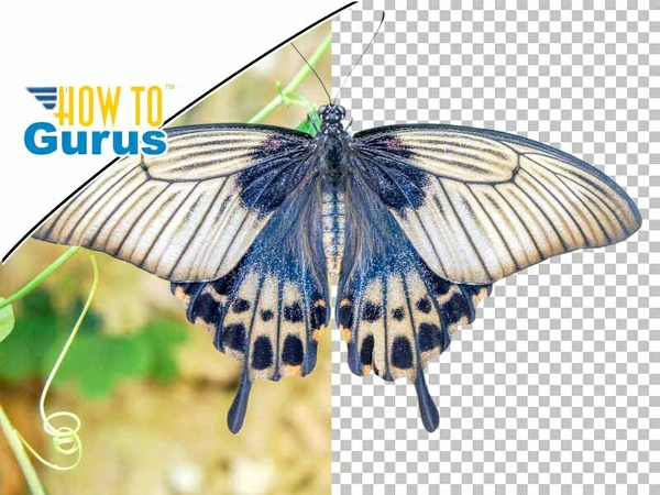Photoshop How to Cut Out an Image using the Pen Tool & Remove Background: CC CS6 CS5 Tutorial