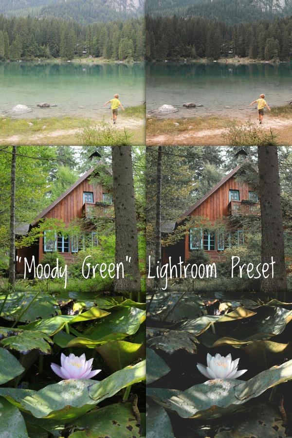 """Moody Green"" 1x Lightroom Preset by Sheck"