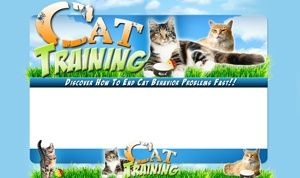 Cat Training PSD Unflattened Minisite Template