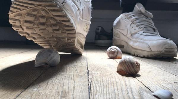 Alex giant crusher - Crushing snail shells