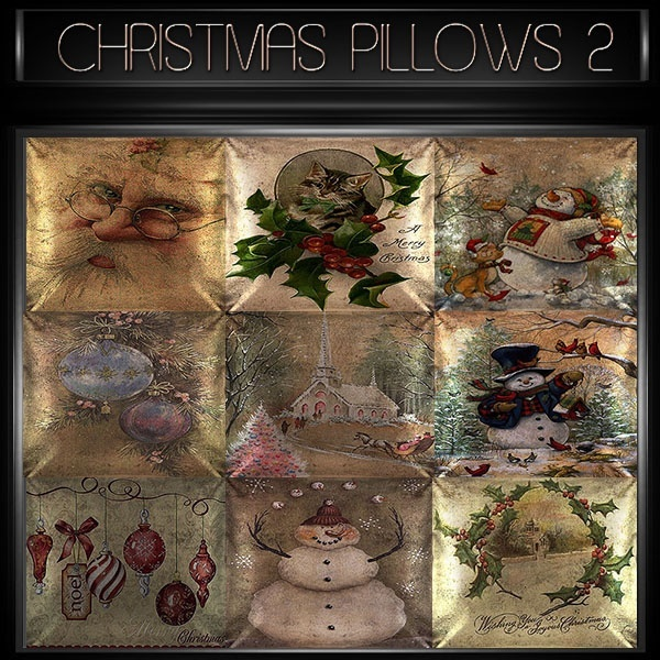 A~CHRISTMAS PILLOWS 2-30 TEXTURES