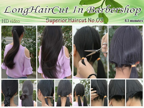 Superior Haircut No.03