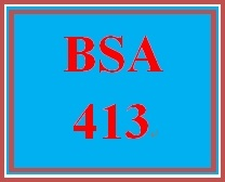 BSA 413 Week 2 Individual: Create a Service Catalog