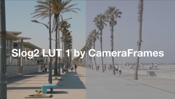 Slog2 SUMMER LUT 1 by CameraFrames