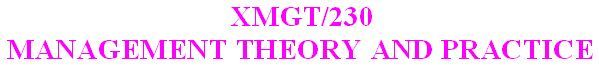 XMGT 230 Week 4 Individual - Management Planning Presentation