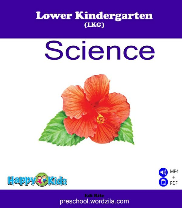 Kindergarten A (LKG) Science