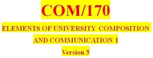 COM 170 Week 5 Final Essay