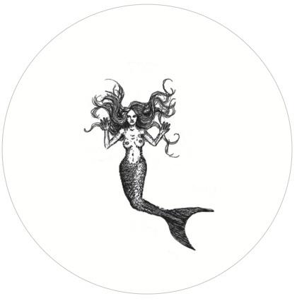 Sirena en Pecera - Taumátropo