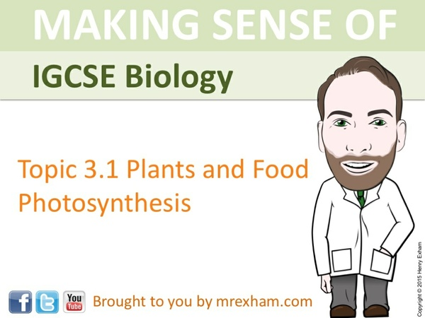 IGCSE Biology - Photosynthesis Presentation