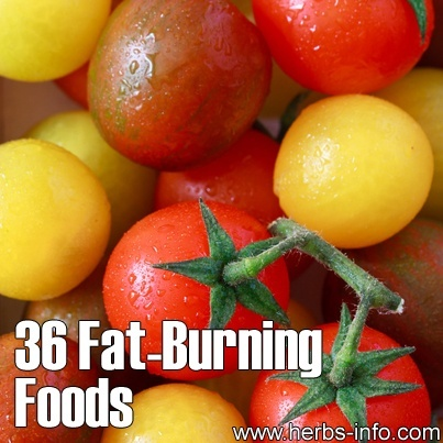 36 Fat Burning Foods. Lose Weight Fast With These Amazing Fat Burning Foods