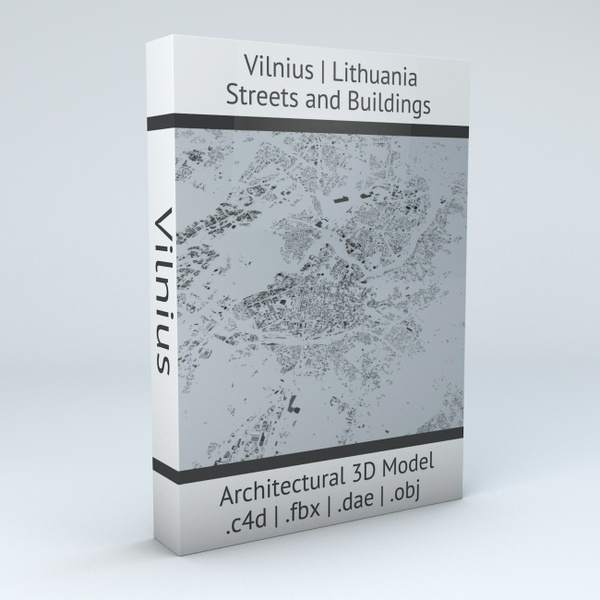 Vilnius Streets and Buildings Architectural 3D Model
