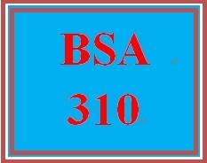 BSA 310 Week 5 Learning Team: Bubble Films