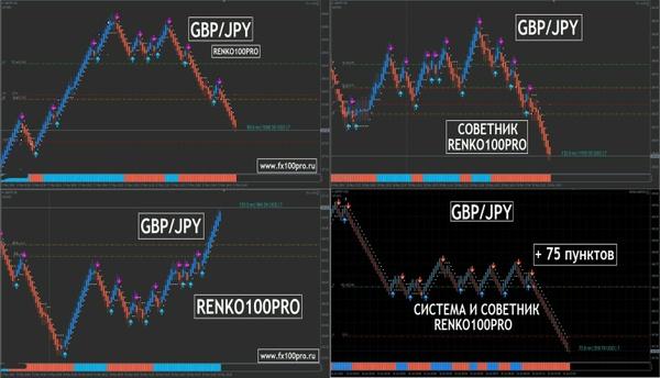 Binary options m5 charts