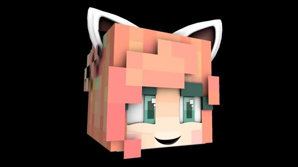 Minecraft Floating Head