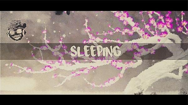 Sleep PF