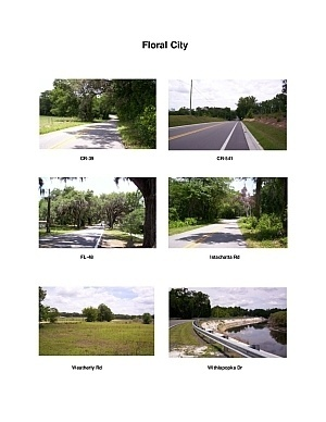 Floral City Scenic Motorcycle Ride