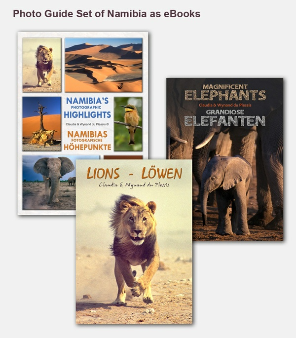 Photo Guide Set of Namibia as one eBook