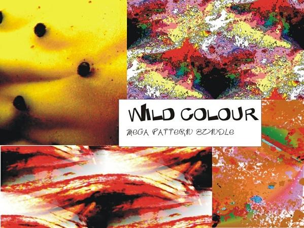 Wild Colours