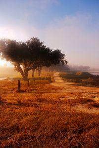Dawn on County Road 138