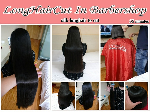silk longhair to cut