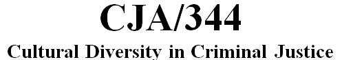 CJA 344 Week 4 Ethnicity and the Police