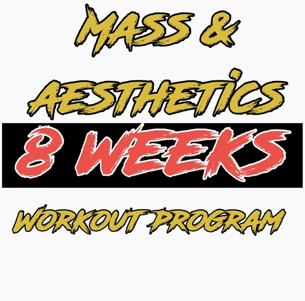 Mass & Aesthetics Volume 1 (8 weeks) Introduction